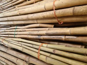 Bamboo pole bundle
